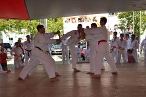 Tae Kwon Do - viele Techniken, viel Zen nichts für Ungeduldige.