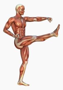 Triggerpunkte entstehen in Überlasteter Muskulatur