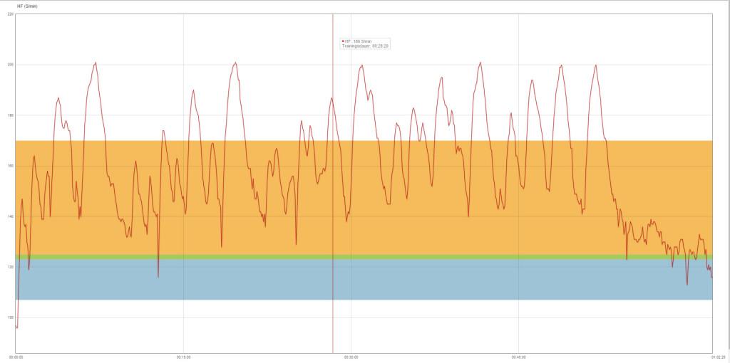 Meine Herzfrequenz bei der ersten Session...